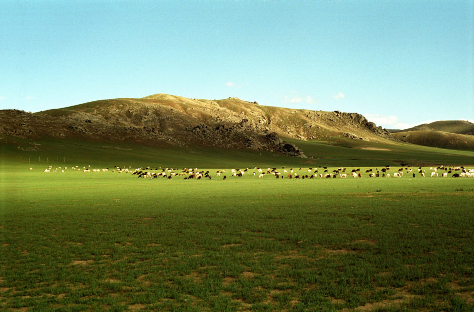 """Mongolie<br><span style=""""font-size:12px;"""">2005 / 2006</span>"""